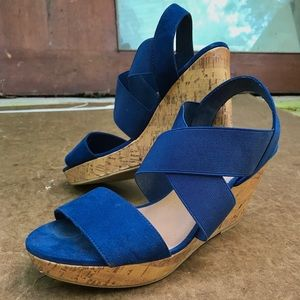 Navy Blue American Eagle Wedges